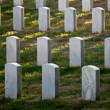 Row of grave stones in Arlington - Stock Photo