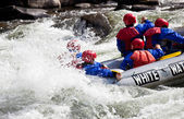 Group in out of control white water raft — Stock fotografie