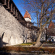Stock Photo: Old town walls in Tallinn