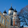 Stock Photo: Alexander Nevsky Cathedral