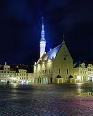 Insolita vista del municipio di tallinn — Foto Stock