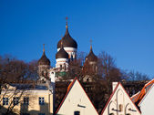 Alexander Nevsky Cathedral — Stock Photo