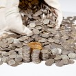 Bag of silver and gold coins — Stock Photo #4329252