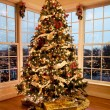 Foto Stock: Beautiful xmas tree at dusk