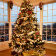Foto de Stock  : Beautiful xmas tree at dusk
