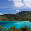 Cinnamon Bay on St John — Stock Photo #5018322