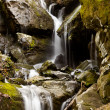 Place of a Thousand Drips in Smokies — Stockfoto
