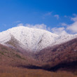 Mount leconte in snow in smokies — Stock Photo #5194681