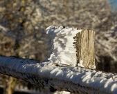 Mrożone śnieg na ogrodzenia drewniane — Zdjęcie stockowe