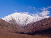 Mount leconte in snow in smokies — Stock Photo