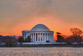 Cherry Blossom and Jefferson Memorial — Stock Photo