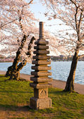 Cherry Blossom and Japanese Monument — Stock Photo