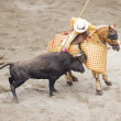 Bull and bullfighter picador — Stock Photo