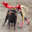 Stock Photo: Bull and bullfighter