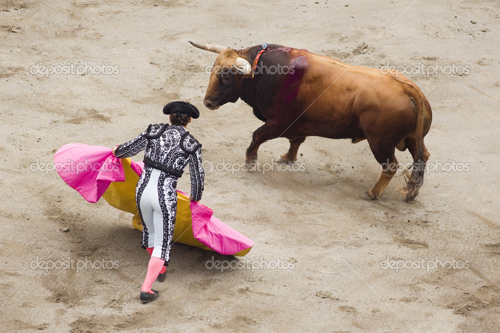 Image tipical of spain, a bullfight or corrida.  quite controversial with the culture against the animal rights — Stock Photo #4811767