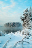 Unfrozen lake in the winter — Stock Photo