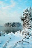 Frusen sjö i vintern — Stockfoto