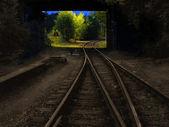 Ferrocarril de sepia — Foto de Stock