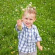Stock Photo: 2 years old boy with flowers