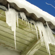 Stock Photo: Longest Icicle