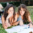 Two Young Woman Study Togheter at Park — Stock Photo
