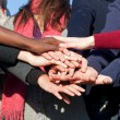 Stack of Multiracial Hands — Stock Photo #4492103