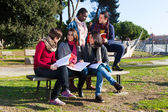 College Students Studying Togheter at Park — Stok fotoğraf