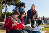 College Students Studying Togheter at Park — Fotografia Stock