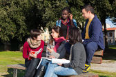 College Students Studying Together at Park — Stok fotoğraf