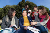 College Students Studying Together at Park — Stock Photo