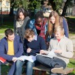 Foto Stock: College Students Studying Together at Park