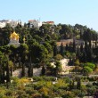 Mount of Olives — Stock Photo