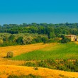 Chianti Region — Stock Photo #4765988