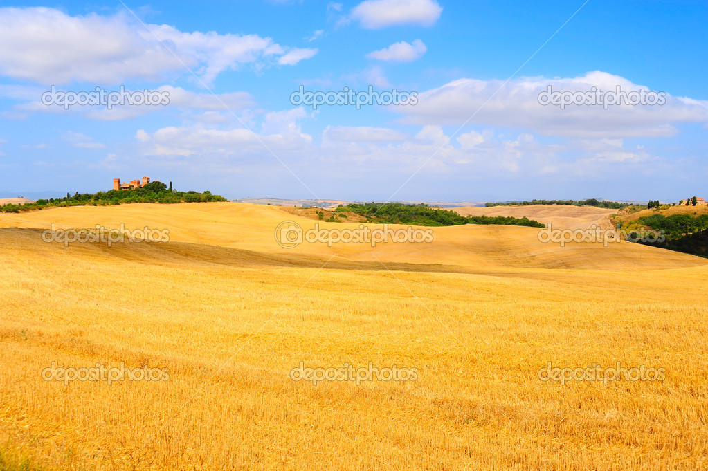 Farmhouse Surrounded By Sloping Meadows Of Tuscany  Foto de Stock   #4765929