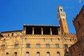 Palazzo Pubblico — Stock Photo