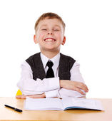 Cheerful Schoolboy — Stock Photo