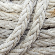 Stock Photo: Ropes background