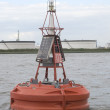Stock Photo: Red buoy