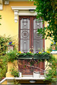 Italian Door and Flowers — Stock Photo