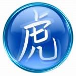 Tiger Zodiac icon blue, isolated on white background. — Stock Photo #4297124