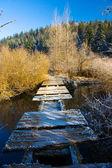 Rickety old bridge over river — Stock Photo