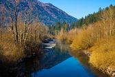 Rio ribnica, eslovénia — Fotografia Stock