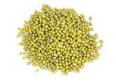 Many mung beans — Stock Photo
