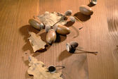 Palamutlar wood — Stok fotoğraf