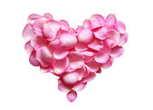 Rose Heart — Stock Photo