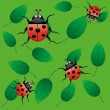Ladybirds on leaf — Stock Vector