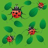 Ladybirds on leaf — Stock Vector