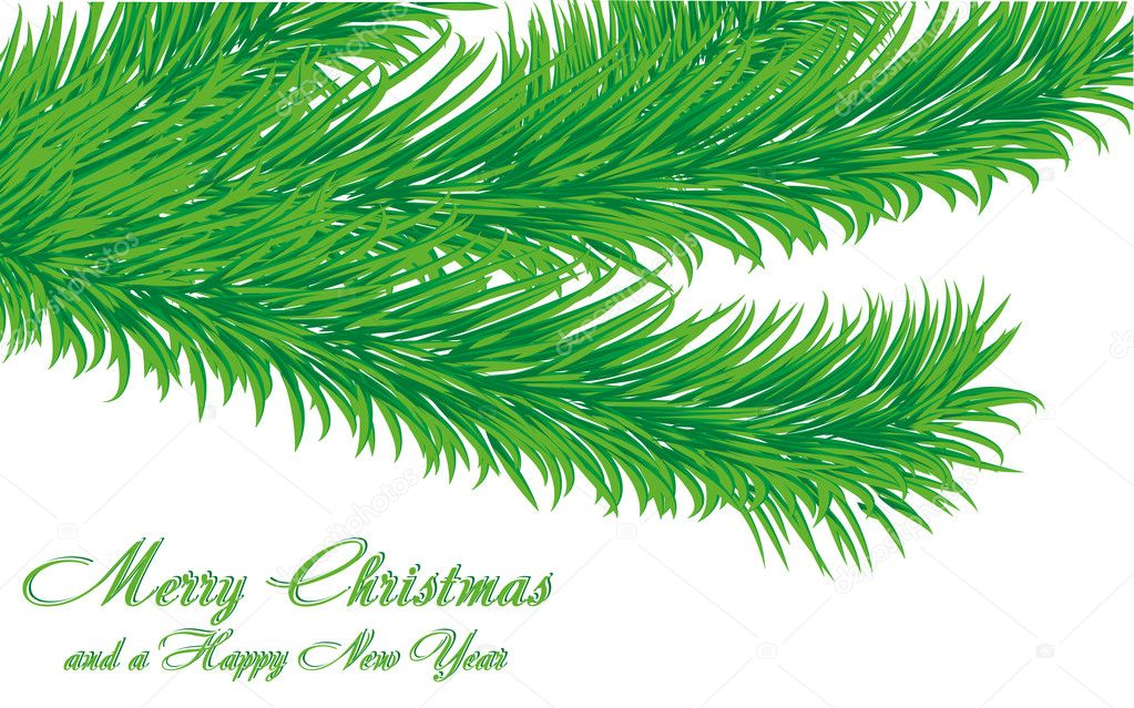 Christmas greetings card with fir tree branch isolated on white and a wish of Merry Christmas and a Happy New Year, vector illustration — Stock Vector #4539775