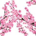 Постер, плакат: Sakura tree 2