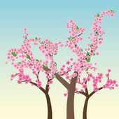 Sakura trees — Stock Vector